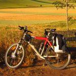 organizzazione-bicicletta